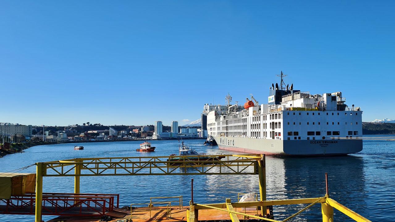 Trabajos en el Puerto